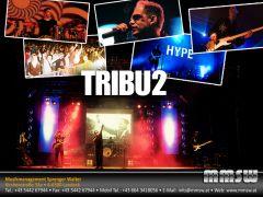 u2_tribute_tribu2